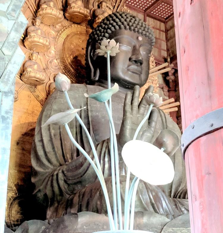 My Top 10 Amazing Experiences in Japan - Nara