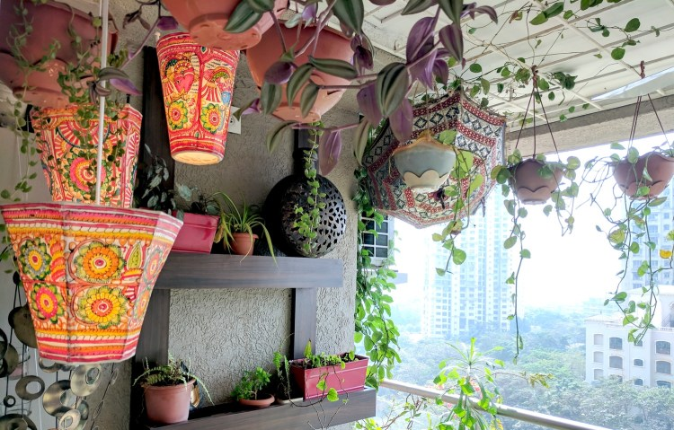 A Balcony Garden In Mumbai - Terrace Reveal
