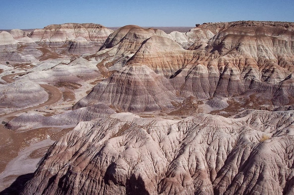 Pictures of Petrified Forest and Painted Desert