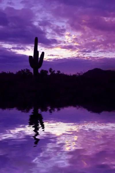 Arizona Sunsets  Arizona Sunset Pictures