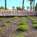 Chandler fashion center just announced five new stores opening before
