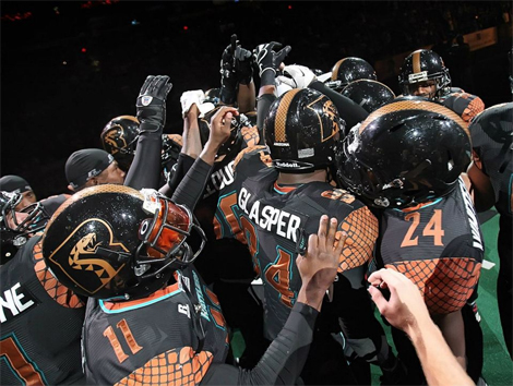 Snaking the Competition Arizona Rattlers in the Playoffs