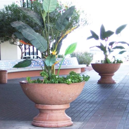 Concrete Wok Pot Planters  Garden Bowls Arizona Pottery
