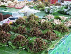 Thai Market - jungle veg