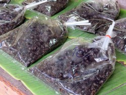 Thai Market - bags of beetles, live ones