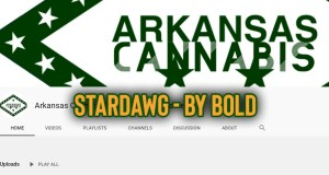 Stardawg - By Bold Cultivation