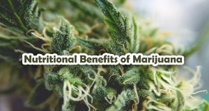 Nutritional Benefits of Marijuana