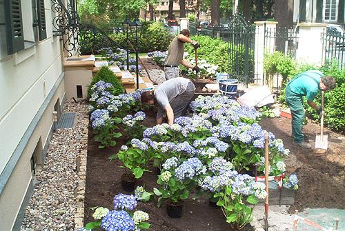 Arkadia Gartengestaltung Berlin  Leistungen Vorgarten