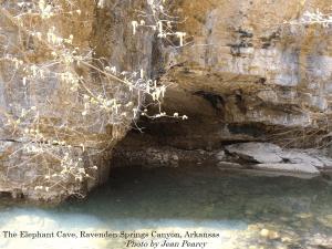 Elephant Cave