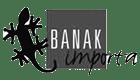 banakimporta-logo