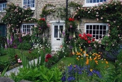 Tipos De Plantas De Un Jardn Cottage
