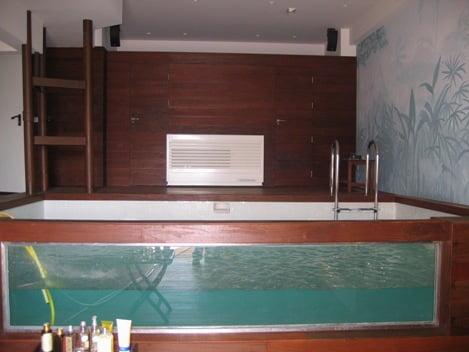 piscina-con-pared-de-cristal