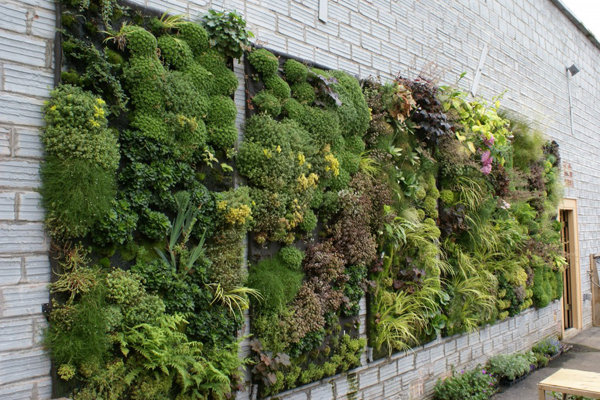 Diseño de jardines verticales - Arkiplus.com