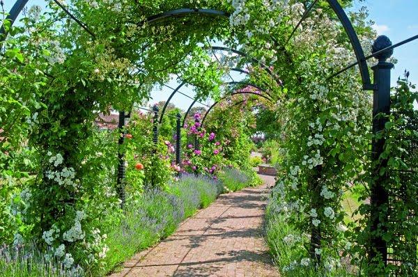 Arcos De Herreria Para Jardin Opciones De Arco En Jardn Puerta - Arcos-de-jardin