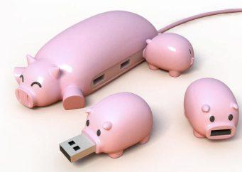 Je craque pour Pig Buddy, le hubb usb en forme de maman cochon!