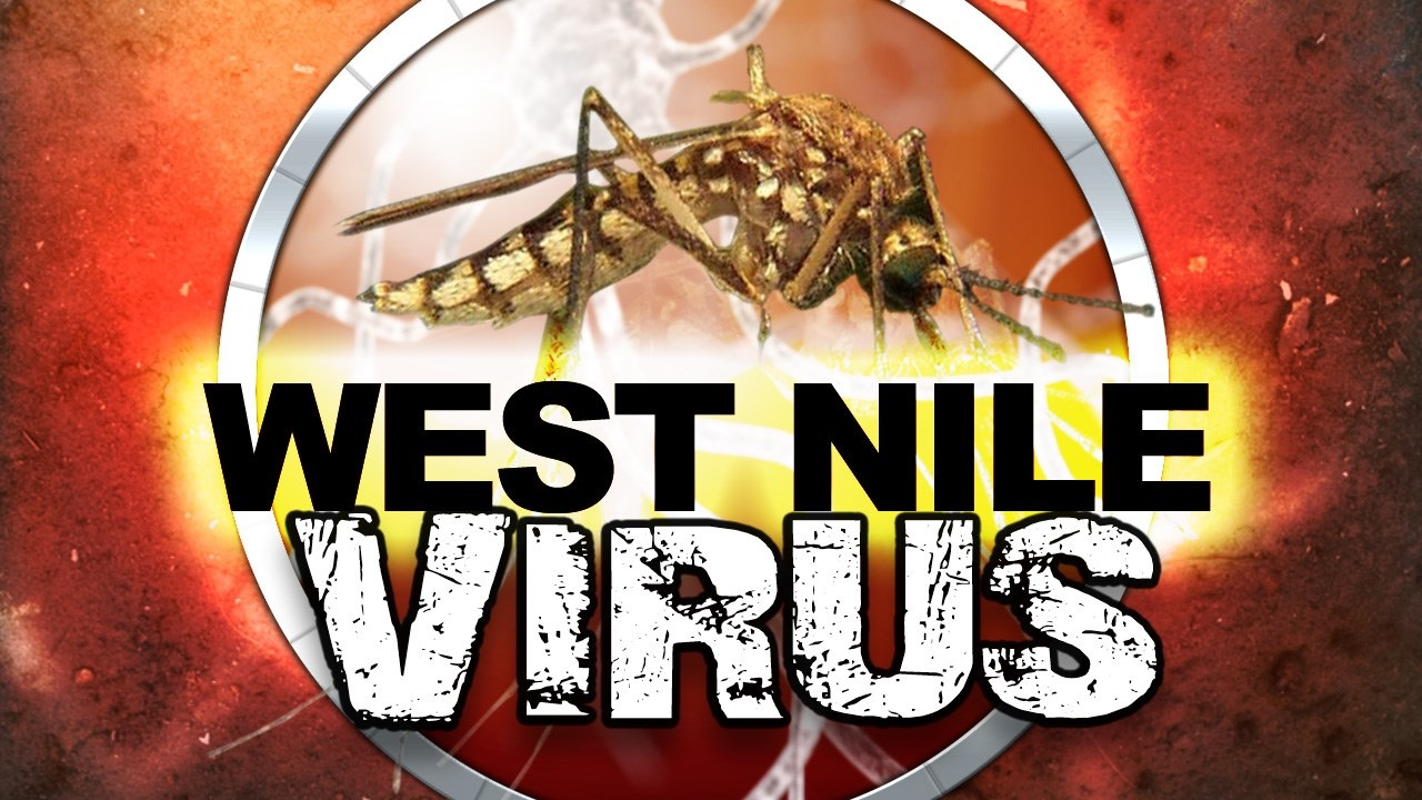 West Nile Virus generic_1501097656460.jpg
