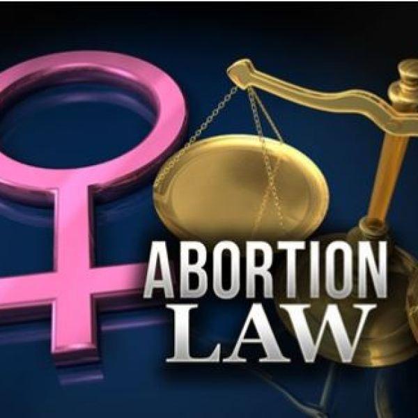 Abortion Law art 2-2-19_1549128105779.JPG.jpg