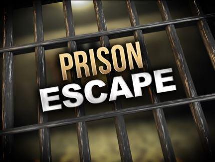 Prison Escape 2-7-19_1549562034049.JPG.jpg