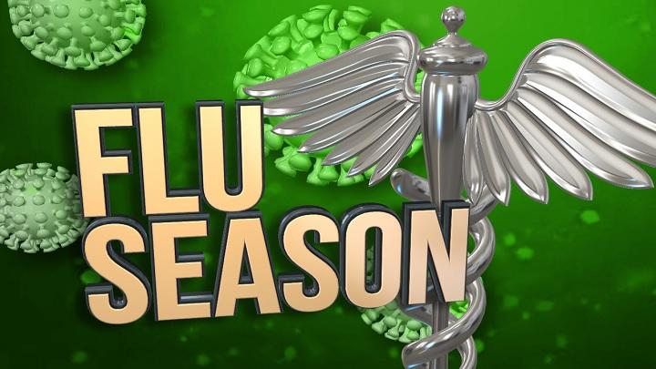 Flu Season_1541538651440.jpg-118809306.jpg