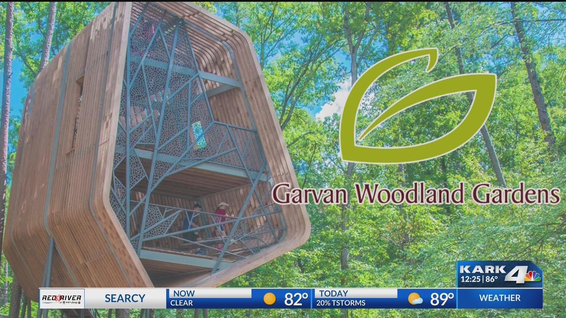 Summer_Activities_with_Garvan_Woodland_G_0_20190604172900-118809306