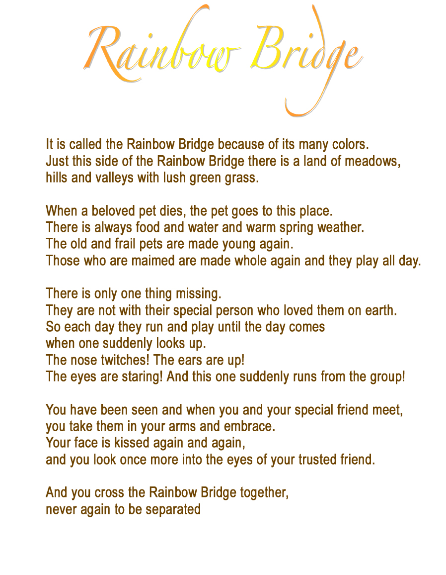 Poem, Pet loss and Pets on Pinterest