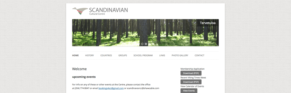 Scandinavian Centre Website Design