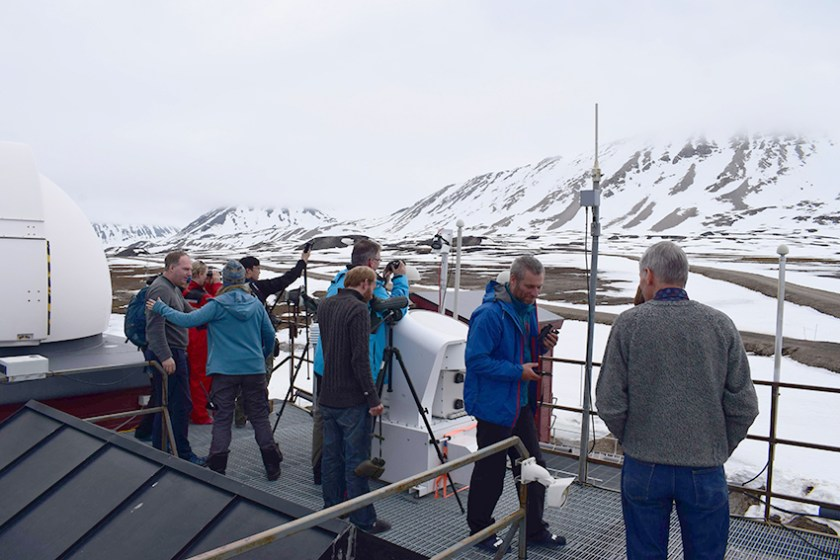 Eisbärwatching am Dach (c)Sandro Dahlke