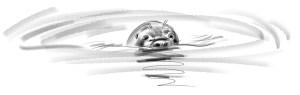 Robbe auf Swalbard(c)kheymach