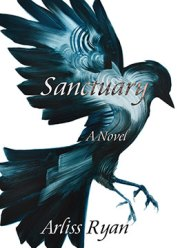 Sanctuary Book Cover - Dane's Version