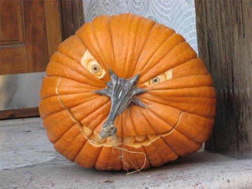 Photo d'une citrouille taillée pour Halloween