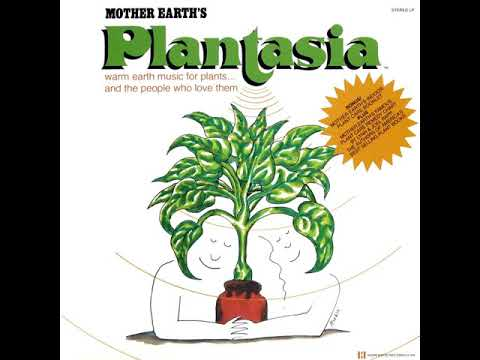 Illustration Plantasia