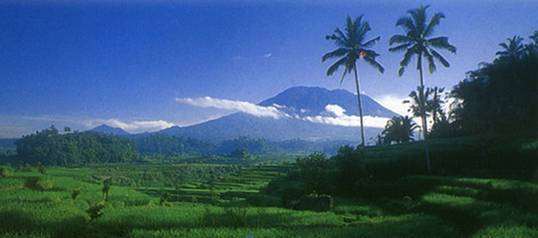 Outbound di Bali - Mahagiri Rendang Karanagsem