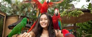 Outbound Bali Bird Park New 2015 b