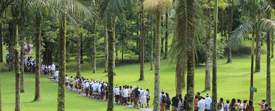 Outbound di Bedugul Suasana Sejuk