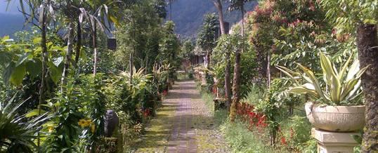 Outbound Bali - Wana Garden