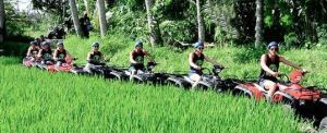 ATV Wake Bali Adventure Rice Paddys
