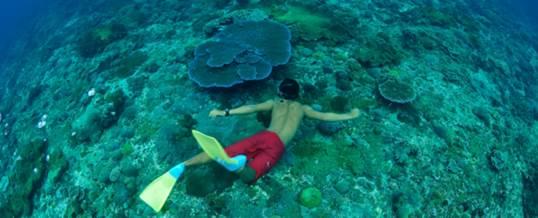 Adventure Bali Hai Cruise 06