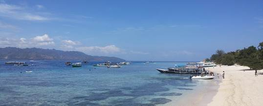 Wisata Adventure Bali Sea Safari Cruise 022016 06