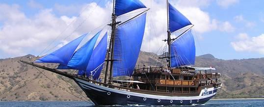 Wisata Adventure Bali Sea Safari Cruise
