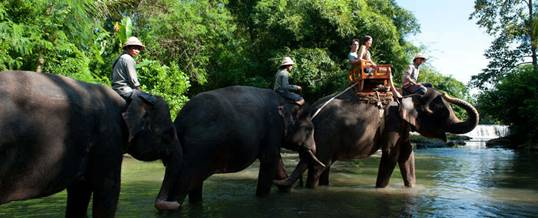 Outing Bali Elephant Expedition
