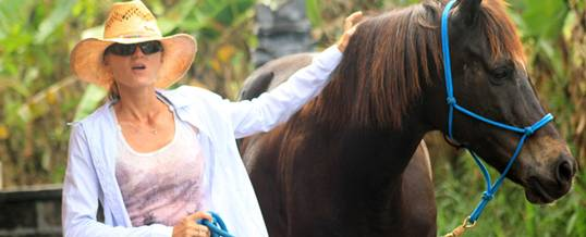 Adventure Bali Horse Riding Yeh Gangga
