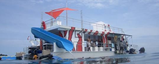 Cruise Bali Marine Walk