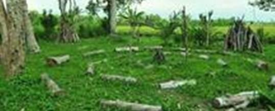 Luwus Camp Camping Ground 1