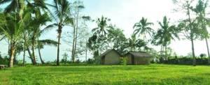 Luwus Camp Camping Ground 2