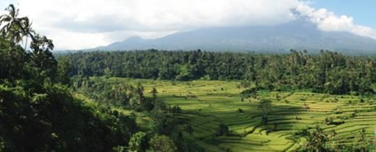 Adventure di Bali Mount Agung View
