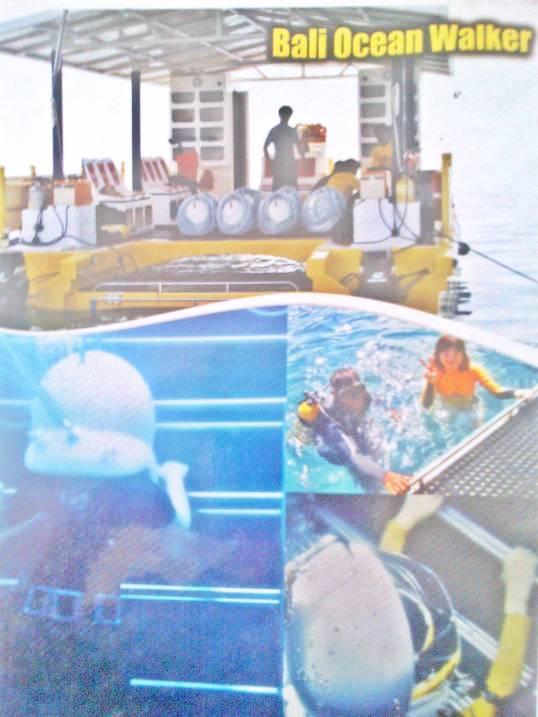 Water Sport Di Bali - Bali Ocean Walker Prepare