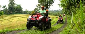 Bali ATV Penebel Adventure Rice