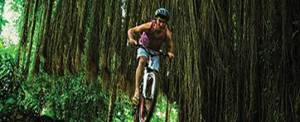 Outbound Di Bali Cycling Rice Paddys Adventure Ubud