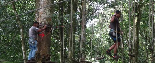 Outbound Bali Tree Top High Rope Peserta WWF Jalan Udara