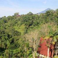 Paket Outbound & Meeting Bali Camp Baturiti